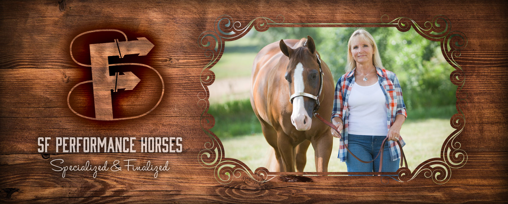 Horse Training Loveland Colorado